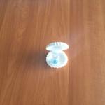 shell-box-pendent-model-design-2-jewellery-christmas-seasonal-offer-send-gifts-buy-one-lk-sri-lanka-13
